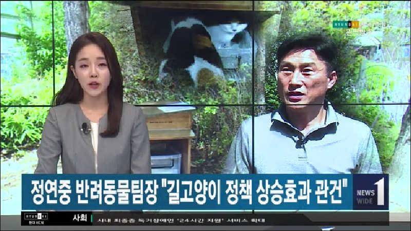 정연중 반려동물팀장 길고양이 정책 상승효과 관건